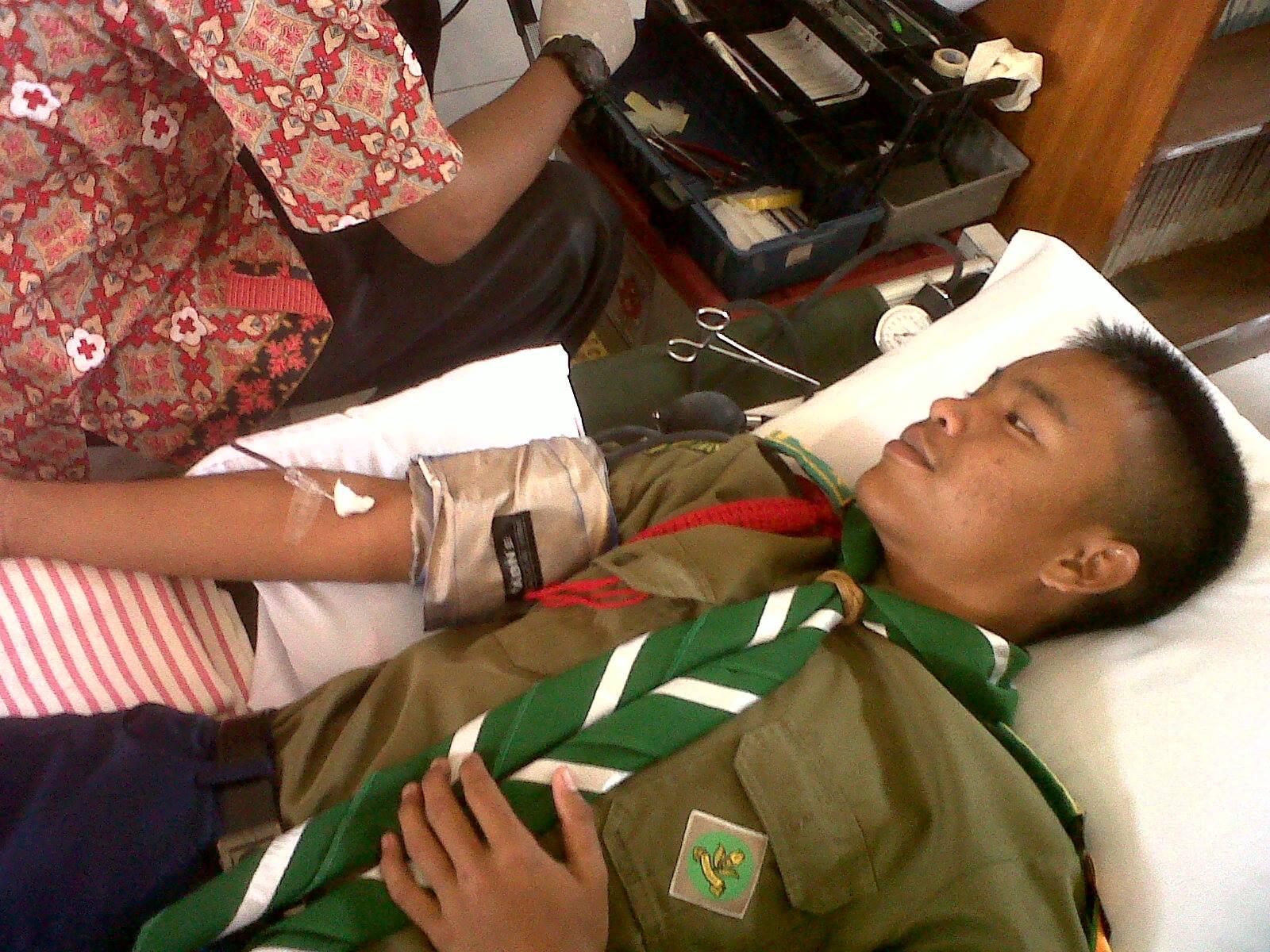 Palang Merah Remaja ( PMR )